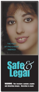 SafeandLegalBrochure-Cover
