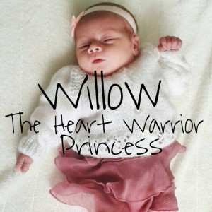 Willow 5074614902303828_n