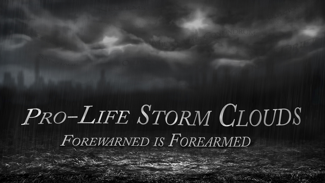 PRO-LIFE STORM CLOUDS - Forewarned is Forearmed -There are now powerful indications that a cancer is spreading rapidly within the pro-life movement. If we ignore them or fail to take them seriously, any potential for protecting the unborn and their moms will come to an end and over four decades of pro-life effort will be wasted.